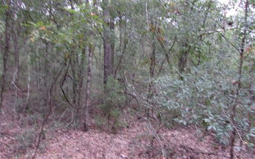 Photo of TBD STATE ROAD 47, Fort White, FL 32038 (MLS # 109112)