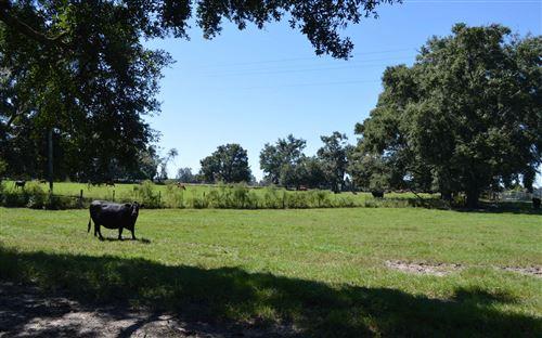 Photo of 16418 221ST ROAD, Live Oak, FL 32060 (MLS # 109115)