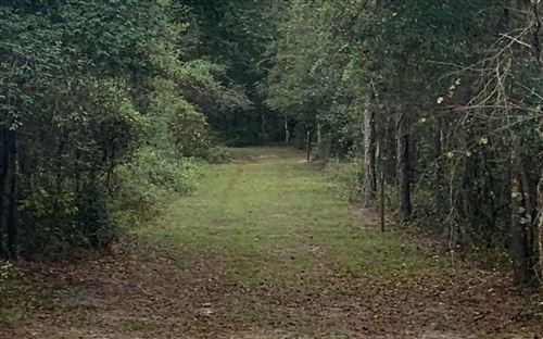 Photo of 198TH TERRACE, OBrien, FL 32071 (MLS # 113122)