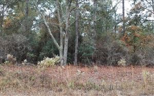 Photo of LOT15 100TH STREET, Dowling Park, FL 32060 (MLS # 96131)