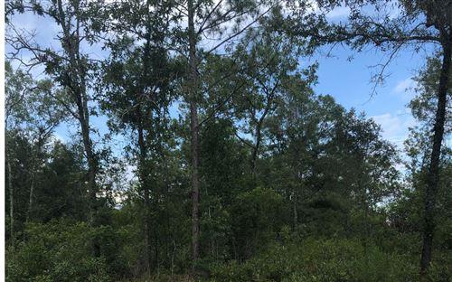 Photo of TBD FREEDOM DRIVE, OBrien, FL 32071 (MLS # 112154)