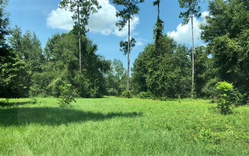 Photo of 21502 160TH ST., Live Oak, FL 32060 (MLS # 113161)