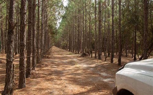 Photo of TBD US HWY 129, OBrien, FL 32071 (MLS # 107172)
