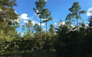 Photo of SE COUNTY ROAD 405, Mayo, FL 32066 (MLS # 102194)
