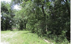 Photo of LOT49 SW 32ND LN, Jasper, FL 32052 (MLS # 96197)