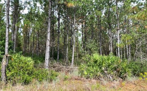 Photo of WOODS LANE, Other, FL 32011 (MLS # 109207)