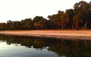 Photo of TBD VERANO COVE, Starke, FL 32091 (MLS # 77210)