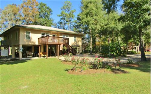 Photo of 1135 NE TANSY ROAD, Mayo, FL 32066 (MLS # 106216)