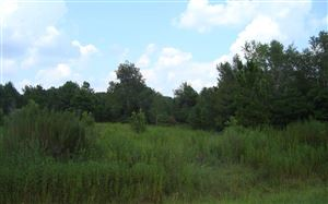 Photo of 3664 60TH AVE NW, Jennings, FL 32053 (MLS # 105217)