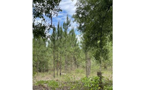 Photo of 26485 45TH ROAD, OBrien, FL 32071 (MLS # 111230)