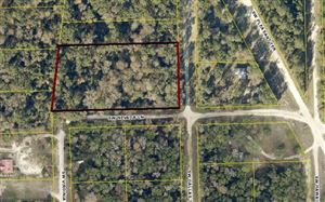 Photo of TBD SW NEBRASKA & DALLAS, Fort White, FL 32038 (MLS # 105239)