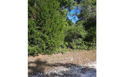 Photo of LONCALA LOOP, Fort White, FL 32038 (MLS # 111242)