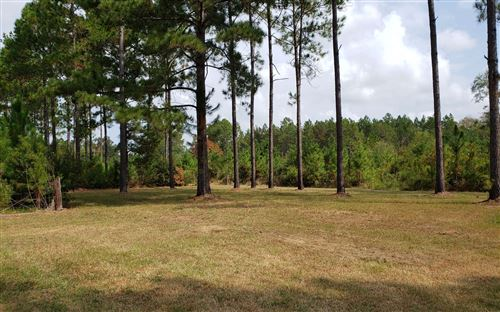 Photo of MILLER HAYES RD, Other, GA 31501 (MLS # 106243)