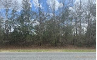 Photo of TBD SW COUNTY ROAD 141, Jasper, FL 32052 (MLS # 110271)