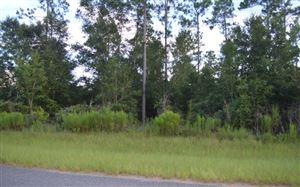 Photo of LOT 8 154TH PATH, Live Oak, FL 32060 (MLS # 105279)
