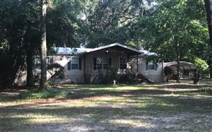Photo of 157 SW PALAWAN GLN, Fort White, FL 32038 (MLS # 105280)