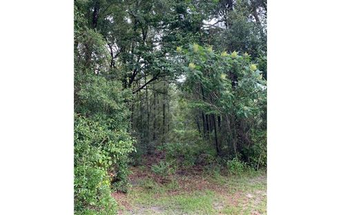 Photo of TBD SW SQUIRREL CT, Fort White, FL 32038 (MLS # 112283)