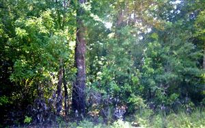 Photo of TBD SW KENTUCKY, Fort White, FL 32038 (MLS # 105306)