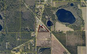 Photo of US-90/CR-137, Wellborn, FL 32094 (MLS # 101318)