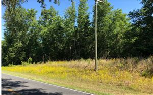 Photo of TBD CR 349 E, OBrien, FL 32071 (MLS # 104318)