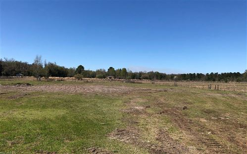 Photo of 386 NW BISON CT, White Springs, FL 32096 (MLS # 110346)
