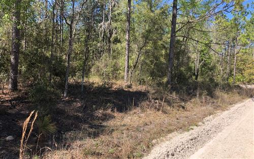 Photo of NW 13 TER/65 ST, Bell, FL 32619 (MLS # 107349)