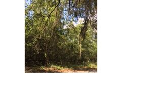 Photo of SE 86TH DRIVE, White Springs, FL 32096 (MLS # 102369)