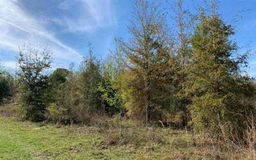 Photo of 1624 SW DREW FEAGLE AVENUE, Fort White, FL 32038 (MLS # 110371)
