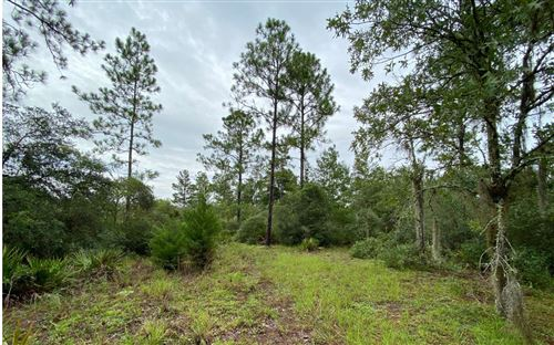 Photo of TBD SE 80TH PLACE, Trenton, FL 32693 (MLS # 108373)