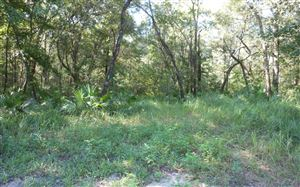 Photo of LOT19 NW POLK PATH, Mayo, FL 32066 (MLS # 105382)