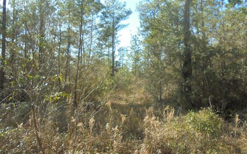 Photo of TBD OPEN SANDS LOOP, Madison, FL 32331 (MLS # 109398)