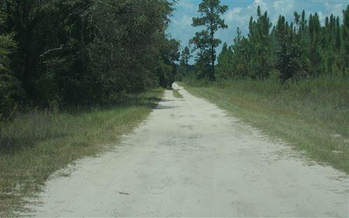 Photo of TBD NE WILLOW BEND RD, Lee, FL 32059 (MLS # 108413)