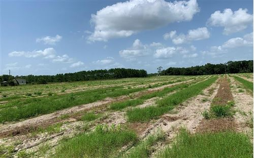 Photo of NW 25TH AVE, Bell, FL 32619 (MLS # 109418)