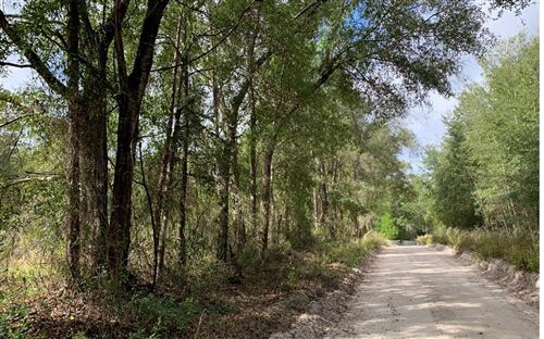 Photo of NW 30TH LANE, Bell, FL 32619 (MLS # 109429)
