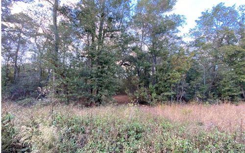 Photo of TBD NW 23RD COURT, Jennings, FL 32053 (MLS # 109434)