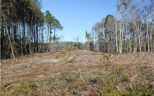 Photo of TBD W SR 6, Jasper, FL 32052 (MLS # 109435)