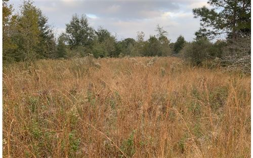 Photo of TBD 203RD PLACE, Live Oak, FL 32060 (MLS # 109451)
