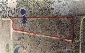 Photo of TBD BULB FARM ROAD, Live Oak, FL 32060 (MLS # 104453)