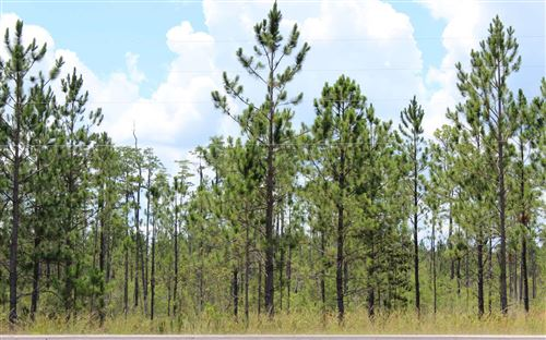 Photo of US HWY 84, Other, GA 31501 (MLS # 109458)