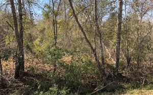 Photo of SW OVERSTREET AVE, Other, FL 32336 (MLS # 103477)