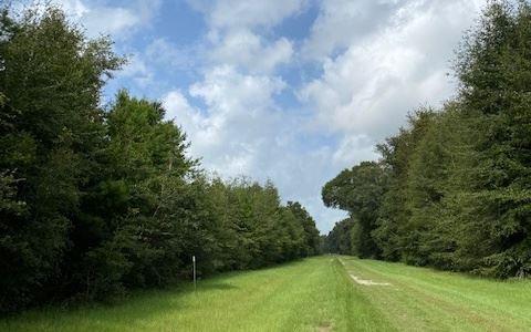 Photo of 0 SE PARLIAMENT TRAIL, Lee, FL 32059 (MLS # 112479)