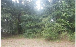 Photo of TBD NW AUSTIN WAY, Lake City, FL 32055 (MLS # 102487)