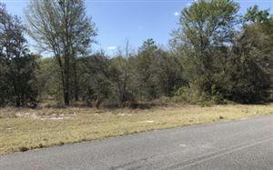 Photo of TBD 73RD ROAD, Live Oak, FL 32064 (MLS # 100515)