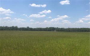 Photo of TBD NW SUWANNEE VALLEY ROAD, White Springs, FL 32055 (MLS # 104525)