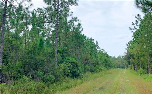Photo of HUNTER ROAD (OFF), Other, FL 32177 (MLS # 108539)