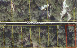 Photo of XX NE 145TH AVE, Cross City, FL 32628 (MLS # 88552)