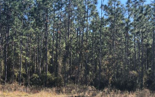 Photo of NW COUNTY ROAD 340, Bell, FL 32619 (MLS # 110562)