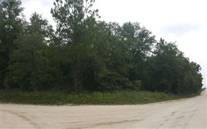 Photo of TBD 196TH TERRACE, OBrien, FL 32071 (MLS # 104612)