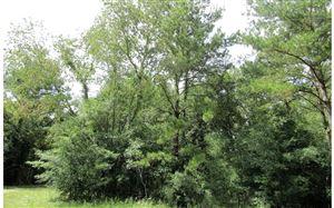 Photo of TBD 177TH LANE, Live Oak, FL 32060 (MLS # 104645)
