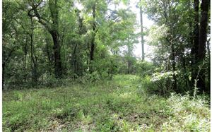 Photo of LOT49 165TH DRIVE, OBrien, FL 32060 (MLS # 104650)